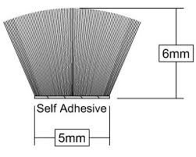 Self adhesive brush strip, dimensions